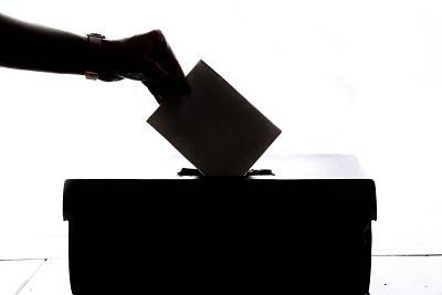 AGM Voting Online